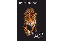 Plakātu druka A2 formāta