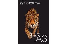 Mazformāta plakātu druka A3 formāta.