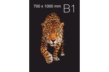 Plakātu druka B1 formāta