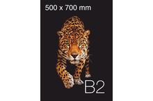 Plakātu druka B2 formāta